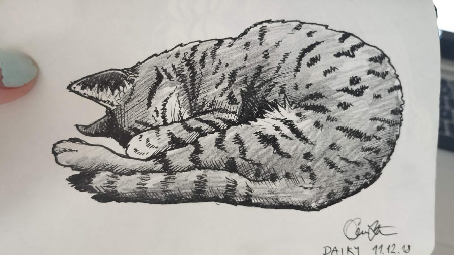 Dayka kresba_gabu milford